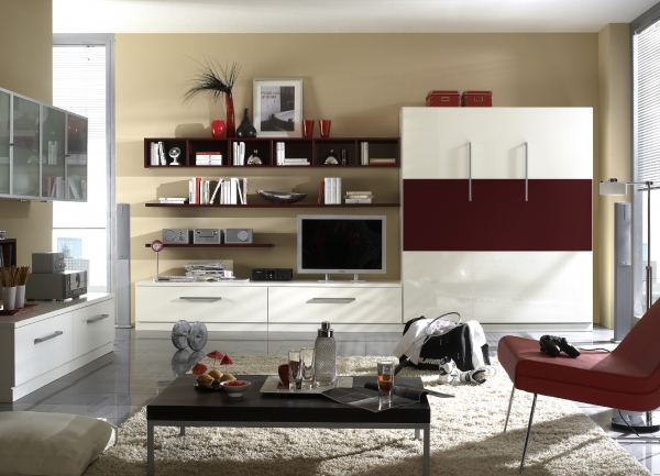 Milano Murphy Bed Combination #2
