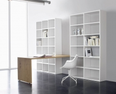 Shelf System & Desk SINUS